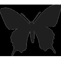 Бабочка 4