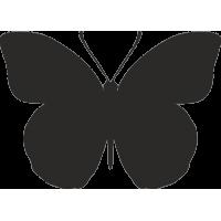 Бабочка 11