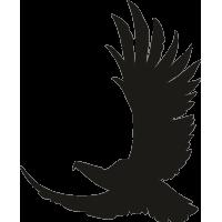 Орел 18