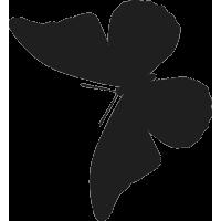 Бабочка 36