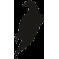 Орел 17