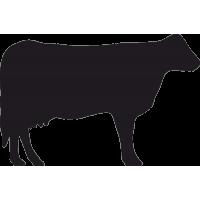 Корова 2