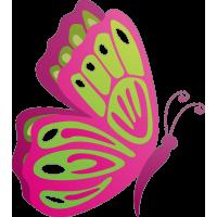 Бабочка 78