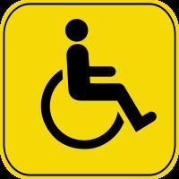Знак инвалид за рулем 4