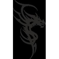 Дракон 55