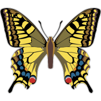 Бабочка 160