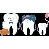 Семья зубов - папа, мама, ребёнок