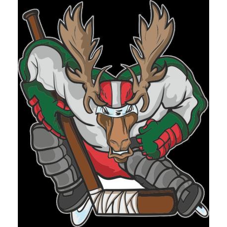 Олень  - хоккеист
