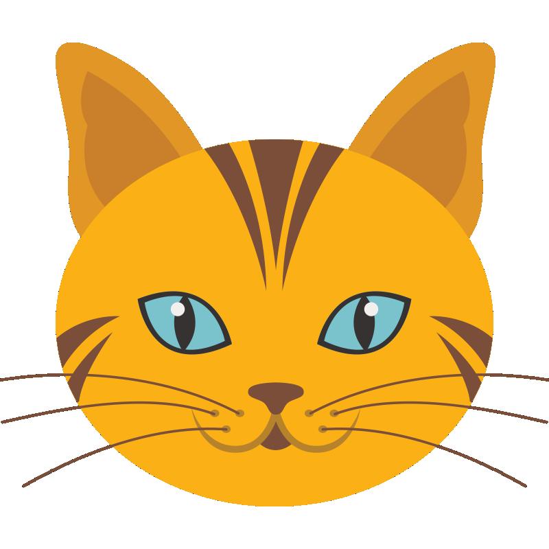 картинка кота мордочка рисунок модель позволит