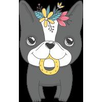 Собака с бубликом