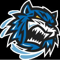 Bridgeport Sound Tigers - Бриджпорт Саунд Тайгерс