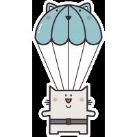 Кот парашютист