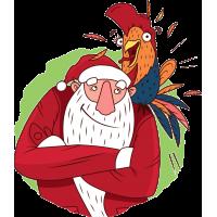 Дед Мороз с попугаем на плече