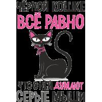 Черной кошке все равно что о ней думают серые мыши