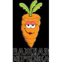 Важная морковка