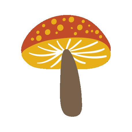 Гриб мухомор