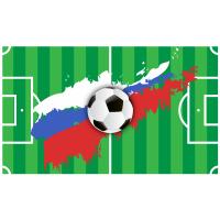 Россия. Футбольное поле