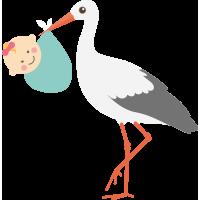 Аист с Младенцем 3