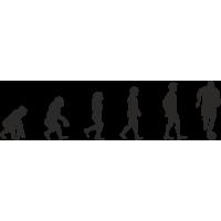 Эволюция от обезьяны до Футболиста 1