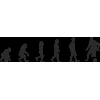 Эволюция от обезьяны до Футболиста 2