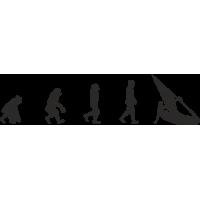 Эволюция от обезьяны до Виндсерфера 3